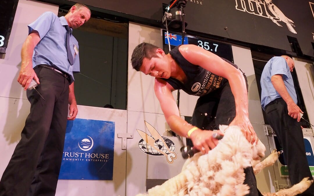 Golden Shears 2015, 55 years of competition