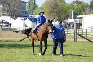 hastings riding for the disabled rider competing in the RDA classes at the Hawke's Bay A&P Show in 2014