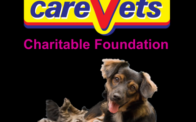 The CareVets Charitable Foundation