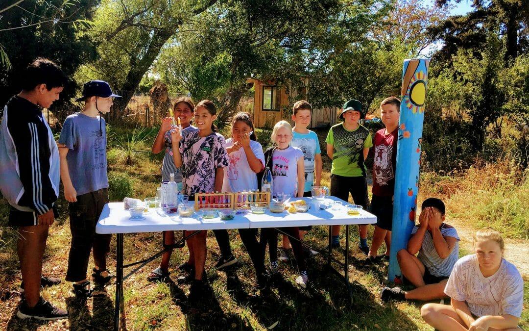 Te Kura o Papatuanuku – Wairarapa Earth School