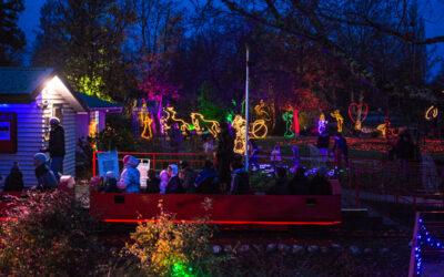 Park Island to Glow for Matariki